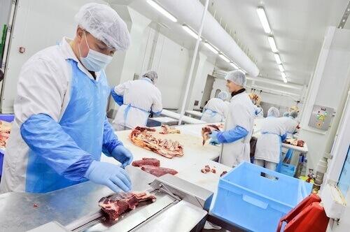 FAQ - vlees productie